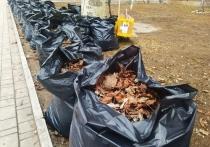 Жители микрорайона Боссе в Донецке расчистили берег Кальмиуса