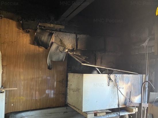 В Гагарине из-за пожара в гаражном кооперативе погибли птенцы перепелок