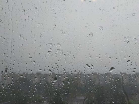 Погода в Хабаровске и крае на 12 апреля 2021: дождливо и тепло