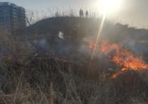 В Хабаровском крае пожарные 48 раз выезжали на тушение палов травы и горящего мусора