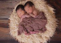За четыре дня в Калуге родились две двойни