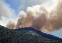 Дополнительные ограничения введут в лесах Забайкалья из-за пожаров