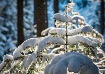 Снегопад продолжится в Амурской области 13 апреля