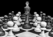 В Петрозаводске выявят сильнейших пенсионеров-шахматистов
