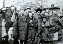 На сайте Минобороны к Международному дню освобождения узников фашистских концлагерей, который отмечается в апреле, появился новый мультимедийный информационный раздел «Забвению не подлежит»