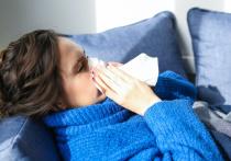 Ученые из Университета Глазго опубликовали работу, в которой проанализировали, как различные «простудные» вирусы способны подавлять друг друга