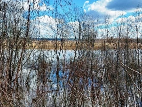 В Тульской области ищут утонувшего в Калужской области рыбака
