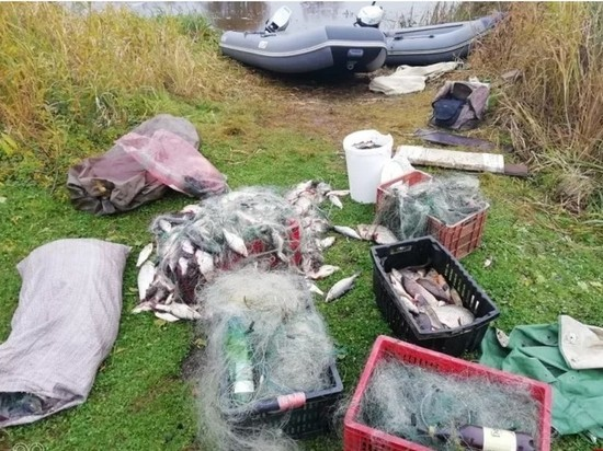 Трех псковичей оштрафовали за незаконную ловлю рыбы на Теплом озере