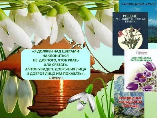 В Крыму будут отмечать День подснежника