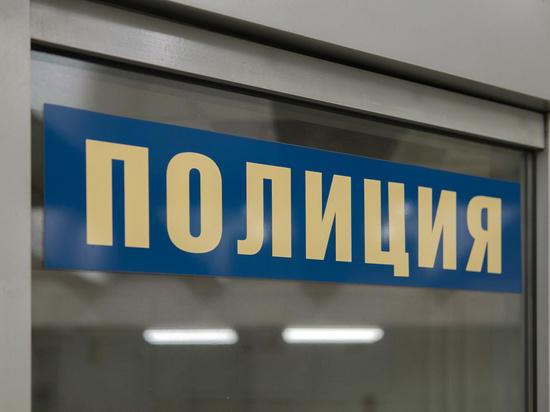 Раритеты украли из «спорного» коттеджа сотрудника силовой структуры