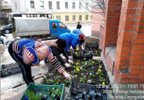 Первые цветы появились на клумбах Серпухова