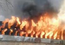 В Петербурге горит фабрика «Невская мануфактура»