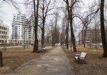 12 апреля: главные новости дня по версии «МК в Карелии»