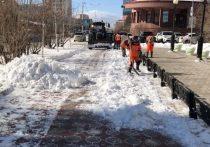 За три дня в столице Якутии вывезли рекордное количество снега