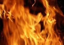 При пожаре в в Мегино-Кангаласском районе Якутии погибли два человека