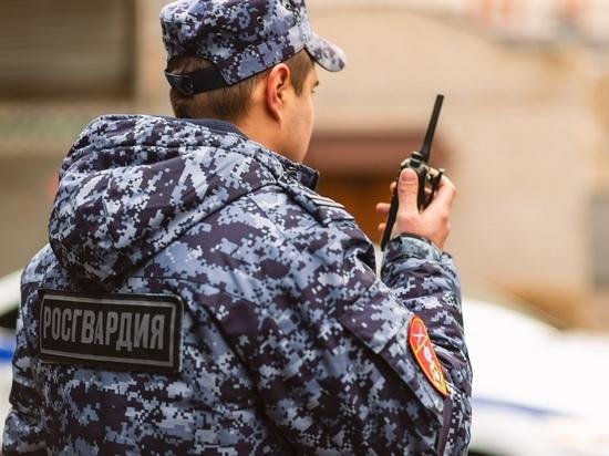 Пскович похитил продукты и косметику из магазина на Завеличье