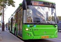 Общественный транспорт Тюмени переходит на летнее расписание