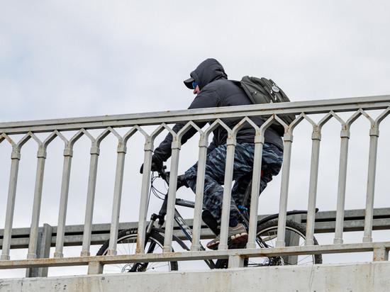 Скутер и велосипед украли безработные жители Псковской области