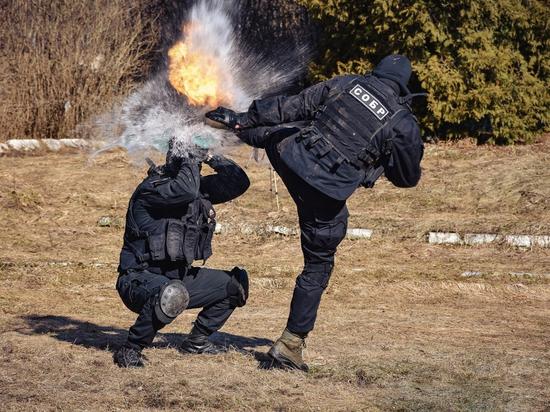 В Смоленской области пройдет пятая смена для юнармейцев
