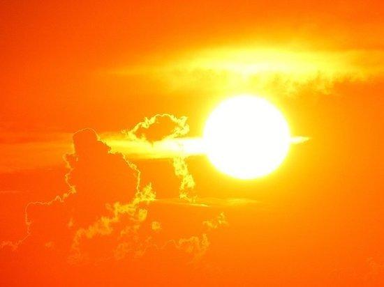 Синоптики рассказали, как долго продлится аномальное тепло в Москве