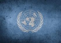 Совбез ООН прервал заседание из-за России и флага Косово