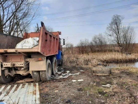 Жителя Дно раздавило грузовиком во время ремонта