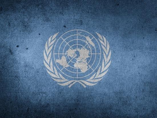 Совет Безопасности ООН прервал заседание по ситуации в Косово и ушел на закрытые консультации