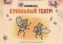 Новый кукольный театр заработал в Серпухове