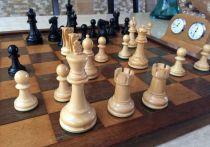 В Абакане предприниматели и дети сразятся в шахматном турнире