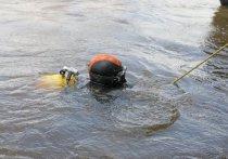Трагедия на пруду «Торфянка» на северо-востоке Москвы, где, пытаясь спасти любимого пса, утонул молодой мужчина, породила в социальных сетях ожесточенную дискуссию