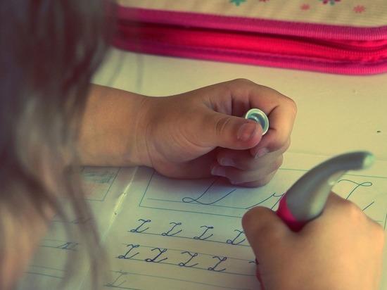Германия: Учителя назвали новые правила экстренного тормоза для школ  «грубой халатностью»