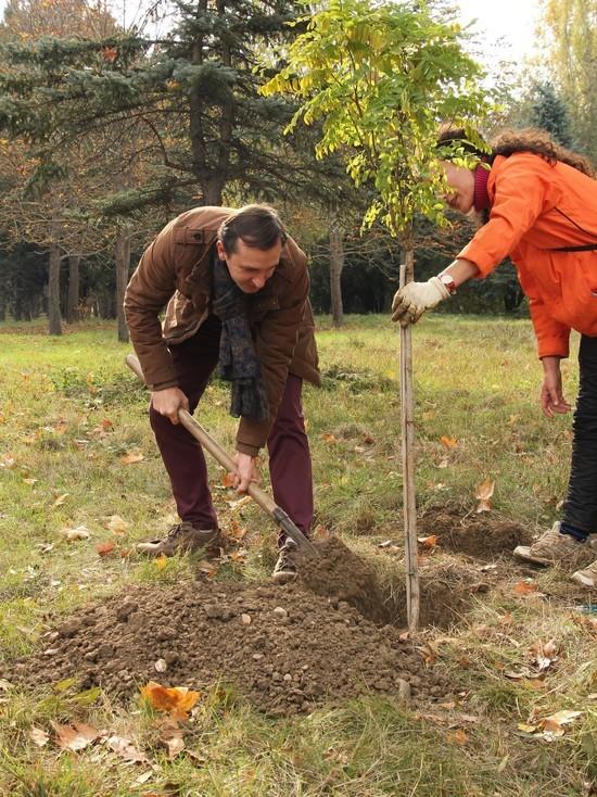 Крымский бизнес предлагает прививать экологические привычки