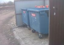 Новые мусорные контейнеры установили в Новосокольниках