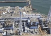 «России выставить счета»: японцы ответили Захаровой после сброса ядерных отходов «Фукусимы»