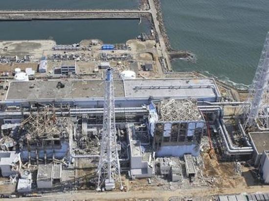 Читатели японского портала Jiji прокомментировали высказывание официального представителя МИД РФ Марии Захаровой по поводу решения Токио о сливе в море ядерных отходов с АЭС «Фукусима»