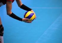 Городской турнир по волейболу пройдет в Пскове 15 апреля