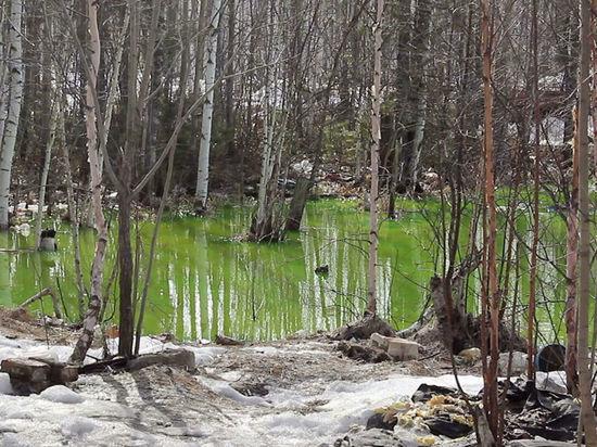 В Югре ищут причины появления кислотно-зеленого озера