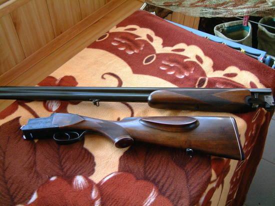 Житель Няндомского района приговорён к обязательным работам за выстрел в собаку из ружья