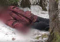 В Кирове случайный очевидец нашел оттаявший труп