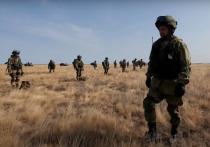 В американском журнале National Interest появился материал, в котором представлен сценарий возможной операции российской армии против Украины