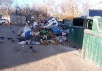 В Оренбурге контейнеры обрастают мусором