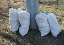 Загрязненную лесополосу в Оренбурге очистили от мусора
