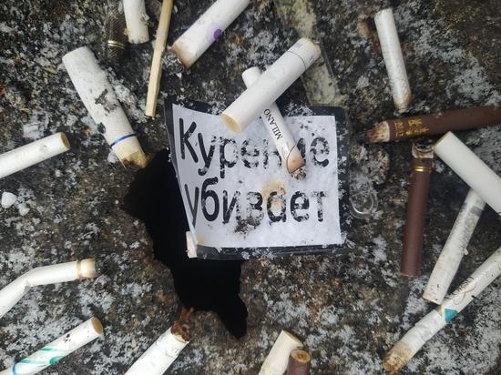 Из ДНР в Россию пытались вывезти 2,5 млн пачек контрабандных сигарет