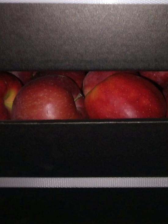 Смоленские таможенники задержали три фуры с нелегальными фруктами