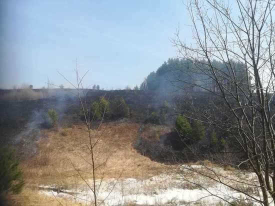 В Нижегородской области огонь от пала сухой травы угрожал Работкам