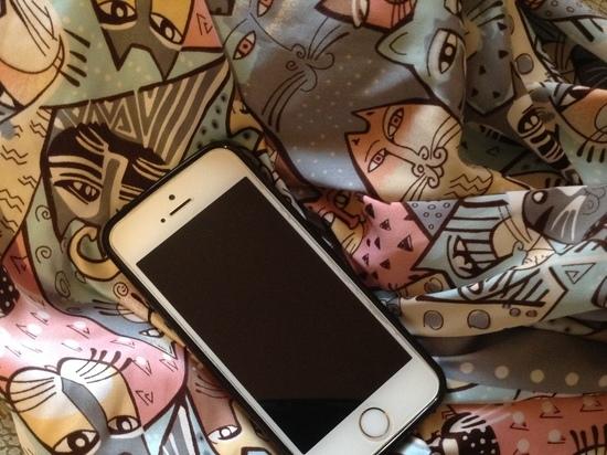 Мама разбушевалась: отобрала у смолянки мобильник в счет залога возврата денег сыну
