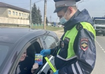 Нарушителей правил перевозки детей ловили в Серпухове