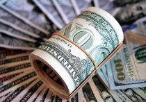 Последние действия США ставят под сомнение целесообразность применения доллара в качестве приоритетной валюты платежа, заявила официальный представитель МИД РФ Мария Захарова