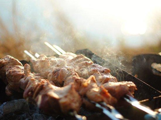 Шашлык из любого мяса содержит необходимые для организма элементы, а также может стать хорошим средством от стресса, считает диетолог сервиса «СберЗдоровье» Маргарита Макуха