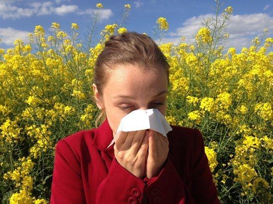 Врач рассказал о способах защиты от сезонной аллергии